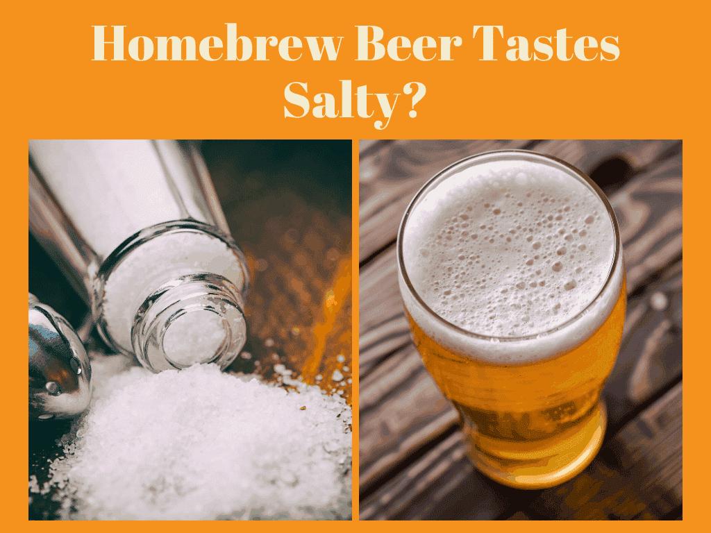 Homebrew Beer Tastes Salty