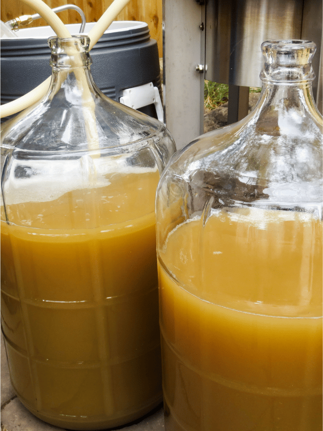 Should You Stir the Fermenter After Pitching Yeast